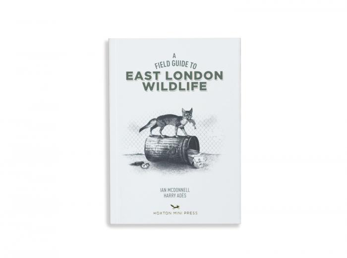 Hoxton Mini Press Field Guide to East London Wildlife Illustrated Book