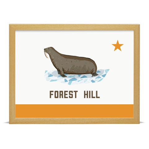 Place in Print Forest Hill Walrus Flag Art Print Wood Frame